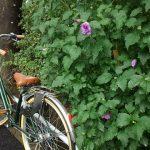 雨の日の自転車通勤での工夫や化粧落ち 靴の濡れ対策やグッズを紹介