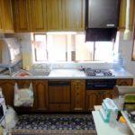 コバエは台所になぜ発生?退治のおすすめグッズと防止する方法を紹介