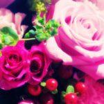 敬老の日にオススメな花の種類や花言葉 プレゼントにセットで贈るなら?