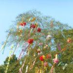 北海道の七夕なぜ柳に短冊つるす?竹林はない?お菓子貰うろうそくもらいとは?