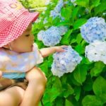 赤ちゃんの外気浴は真夏や雨の日どうする?夜や夕方でも効果あるの?