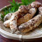 松茸選び方や虫食いの見分け方 国産と中国産の違いは?